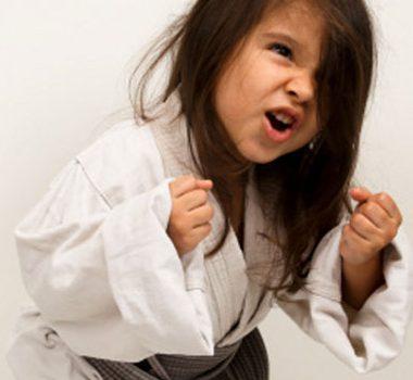 Karate Akademiet åbner Mandag d. 8/6-2020